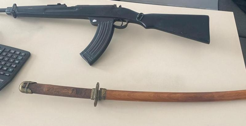 Global action against mail order gun traffickers